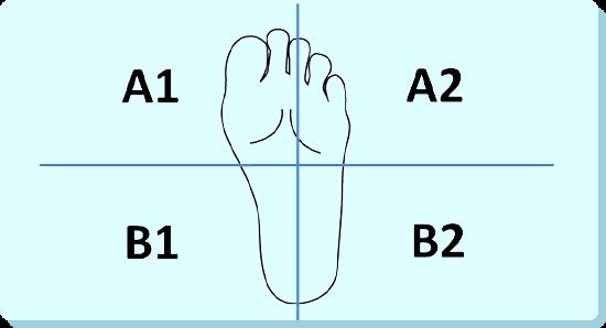4スタンス理論の図