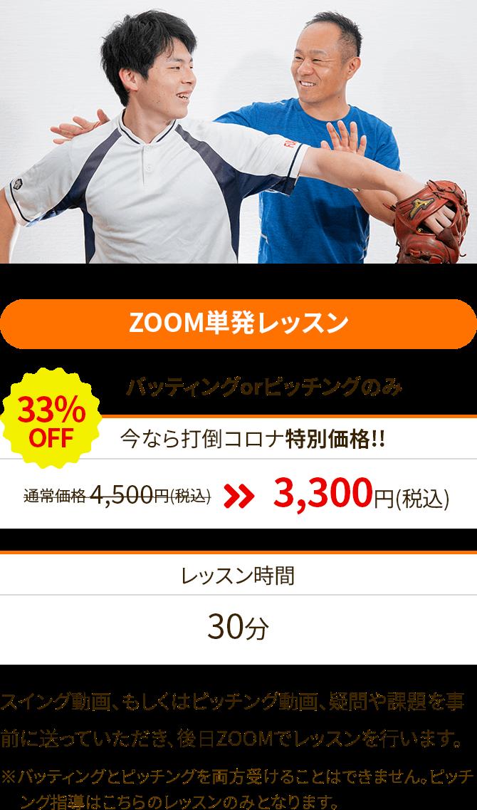 ZOOM単発レッスン