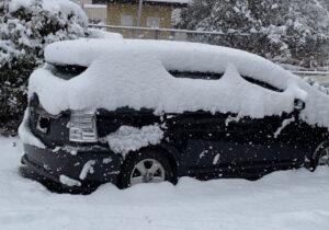 大雪の写真